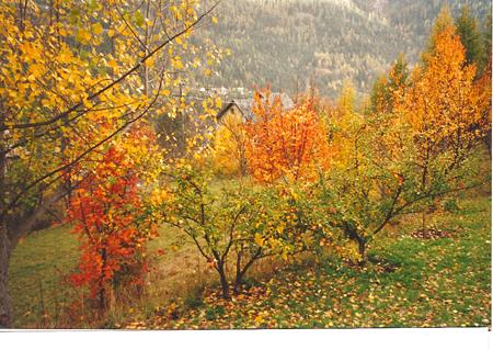 villars-automne.jpg