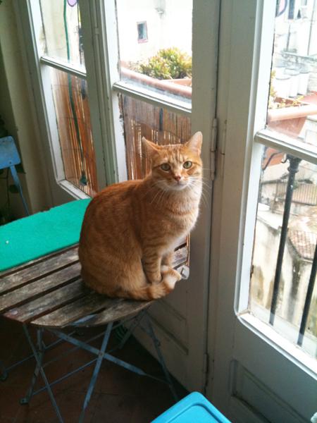 Fersen fait sa commère et surveille le quartier du Gotico!