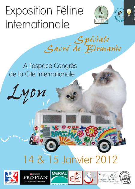 affiche expo feline Lyon