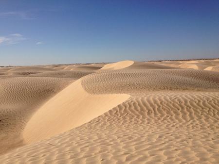 dunes sahara