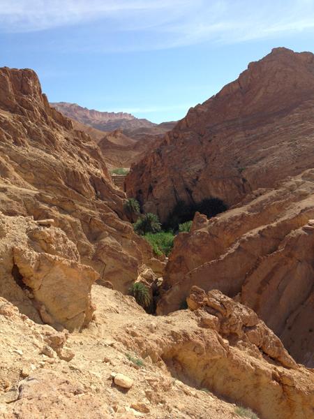 gorge oasis chébika