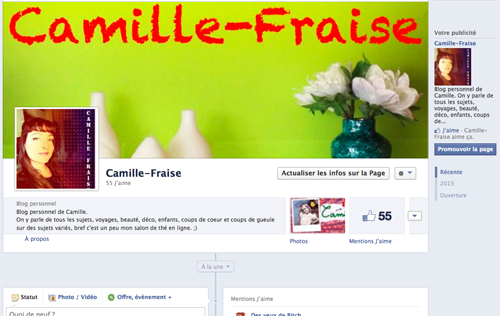 capture page FB camille fraise