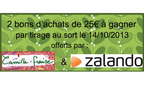 concours Zalando Camille-Fraise