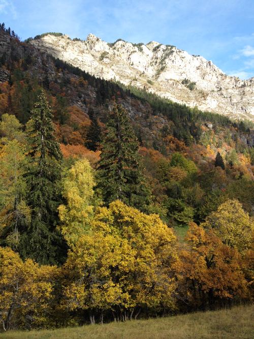 montagne alpes de hautes provence
